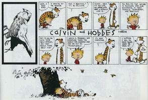 Calvin and Hobbes on life and death