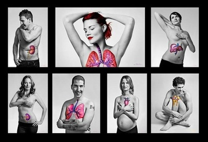 Organ donation art